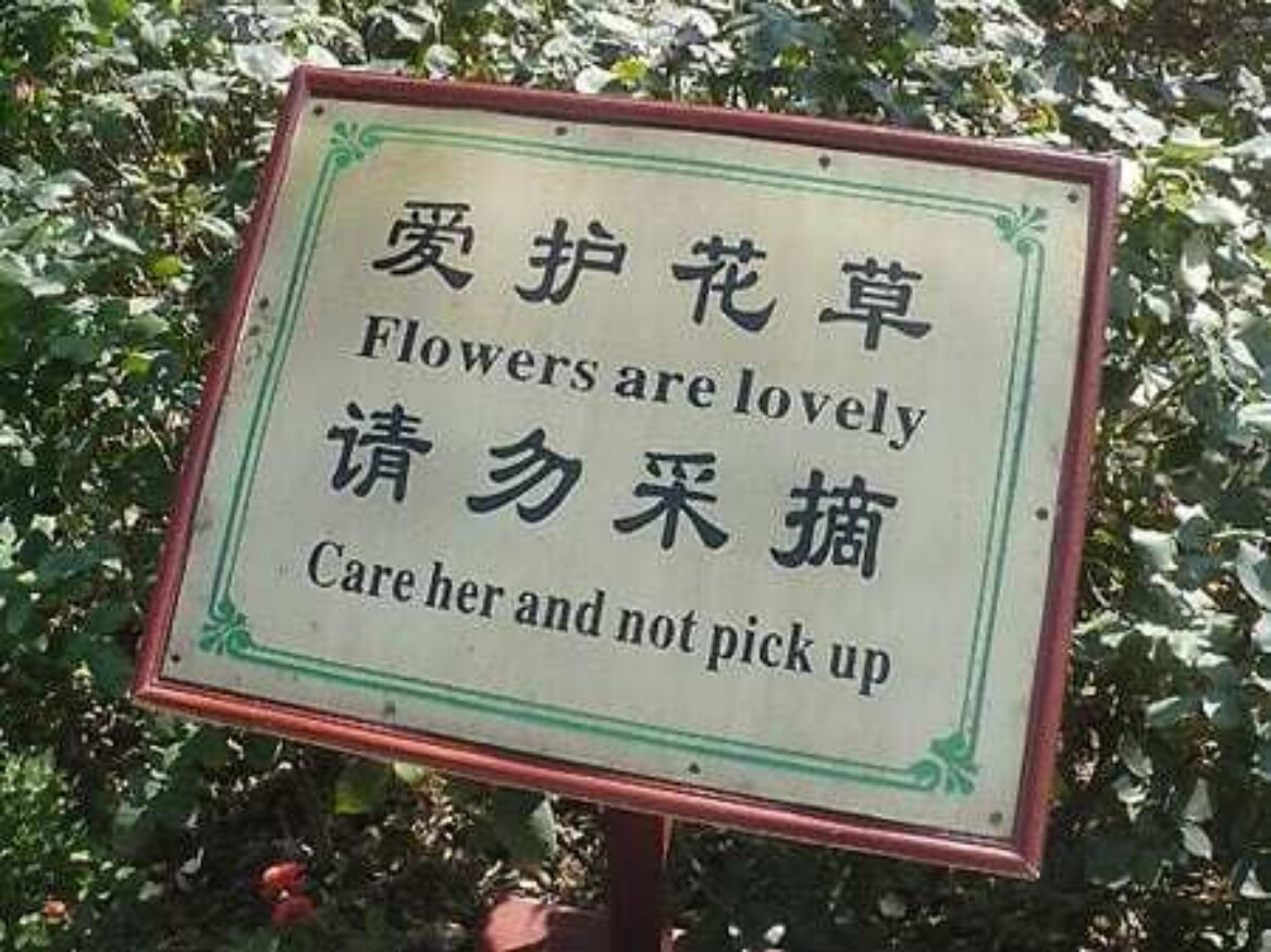 """Sign with characters translated into mangled English """"Flowers are lovely. Care her and not pick up"""""""